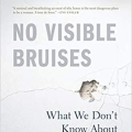 Cover Art: No Visible Bruises by Rachel Louise Snyder - a picture of cracked plaster - not only of an enraged fist but of a damaged, fragmented self (?)